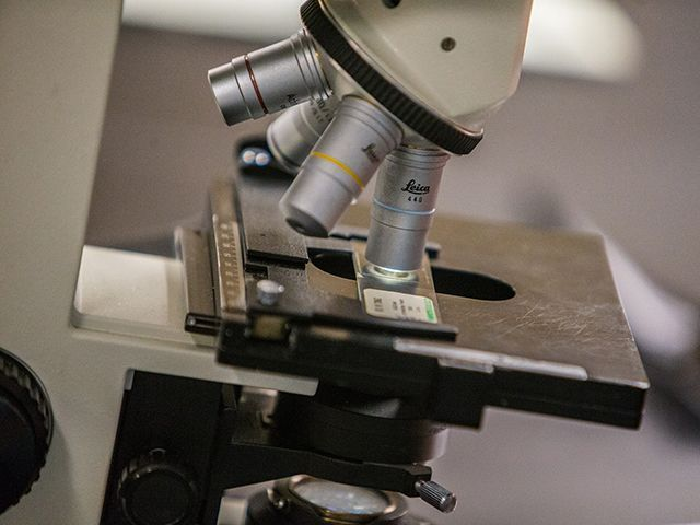 Close-up of microscope