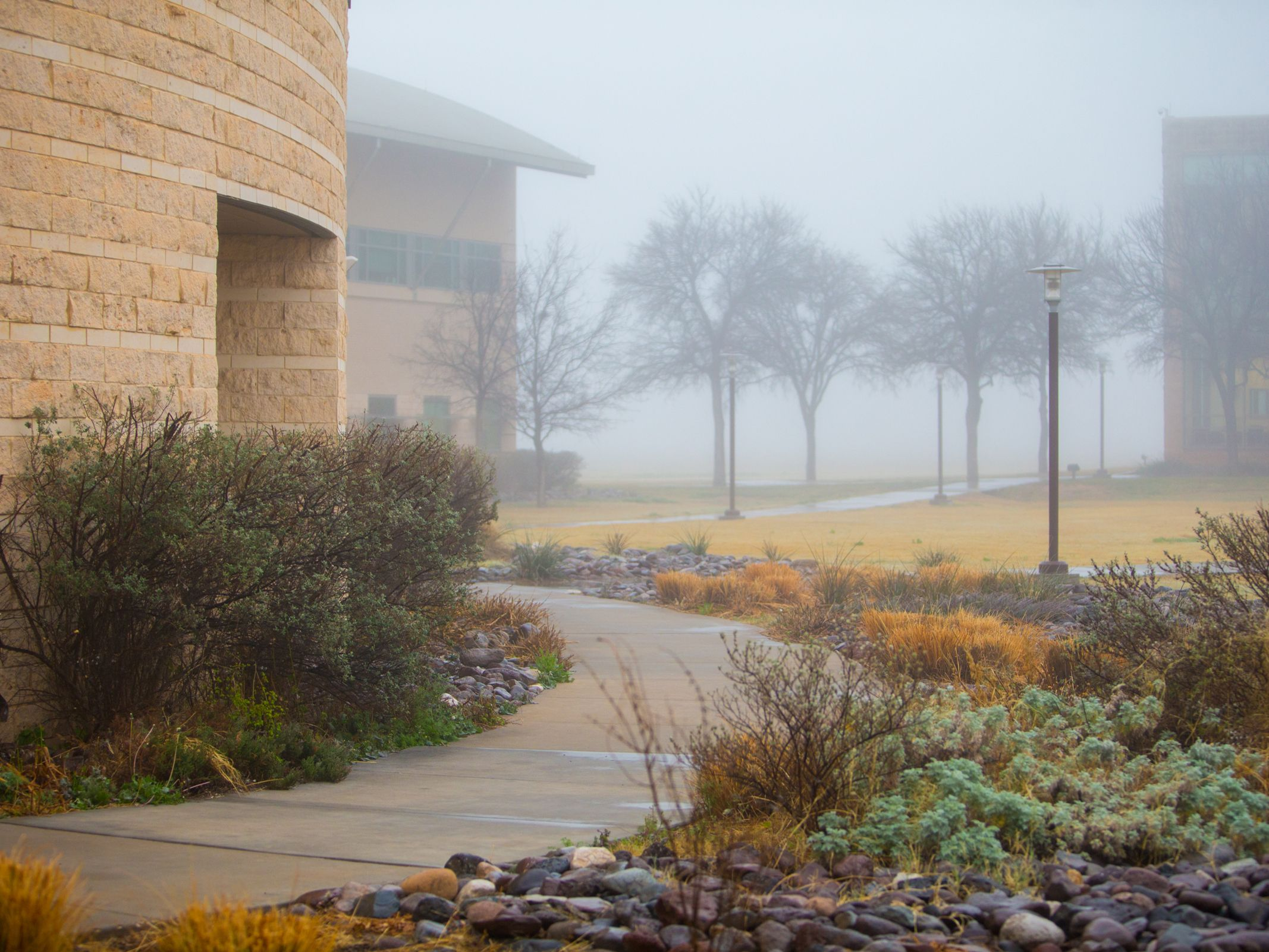 Picture of foggy campus
