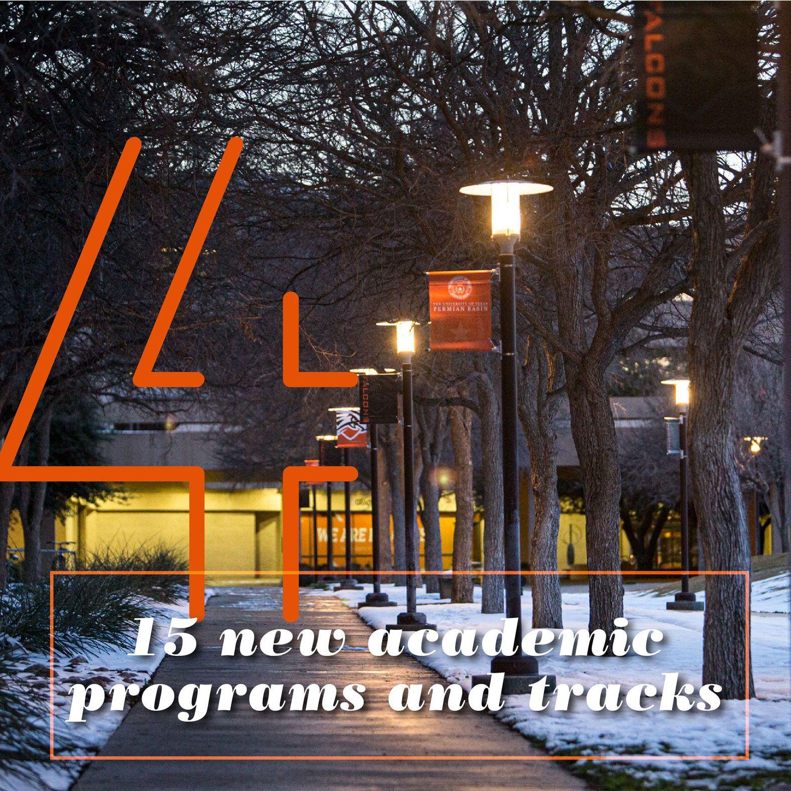 Tiro de belleza del campus con nieve